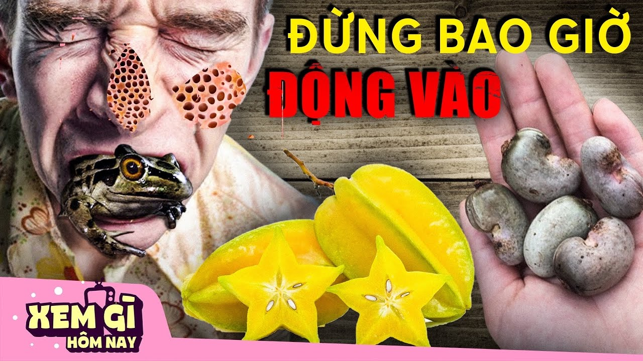 6 Món ăn NGUY H.IỂM NHẤT Việt Nam khiến hàng NGHÌN người MẤ.T MẠNG mỗi năm