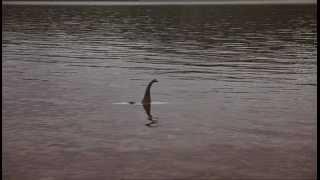 Дело о планете Земля: Лох-Несс   (2005) National Geographic