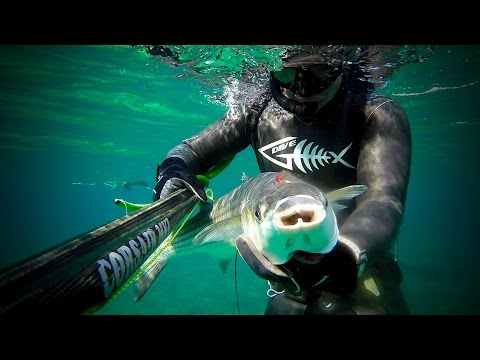 Alternative Cyprus Spearfishing 2|Grey Mullet 5kg-Dentex-Seabreams-Garfish|Pescasub|GO PRO