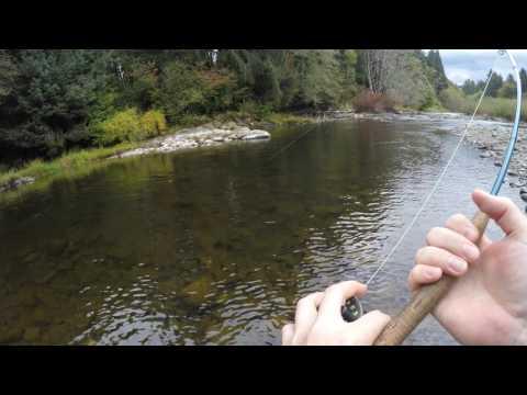 Siletz River Salmon