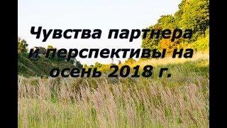 Расклад Таро - Чувства партнера и перспектива отношений  на осень 2018 г.