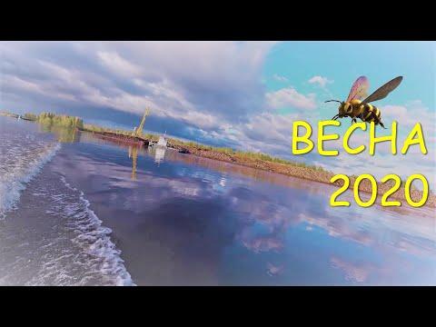 Архангельская область/Ленский район/Весна 2020/Половодье.