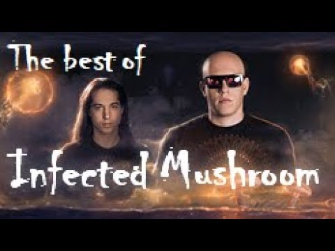 The Best of Infected Mushroom (1999 - 2017 Mix)