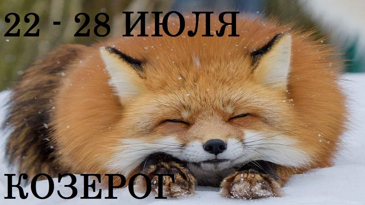 КОЗЕРОГ Таро прогноз 22-28 ИЮЛЯ Онлайн гадание