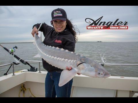 California Delta Sturgeon Fishing