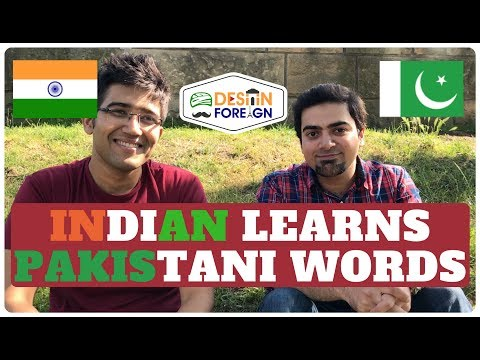 INDIAN LEARNS PAKISTANI WORDS | India vs Pakistan | Desi in Foreign