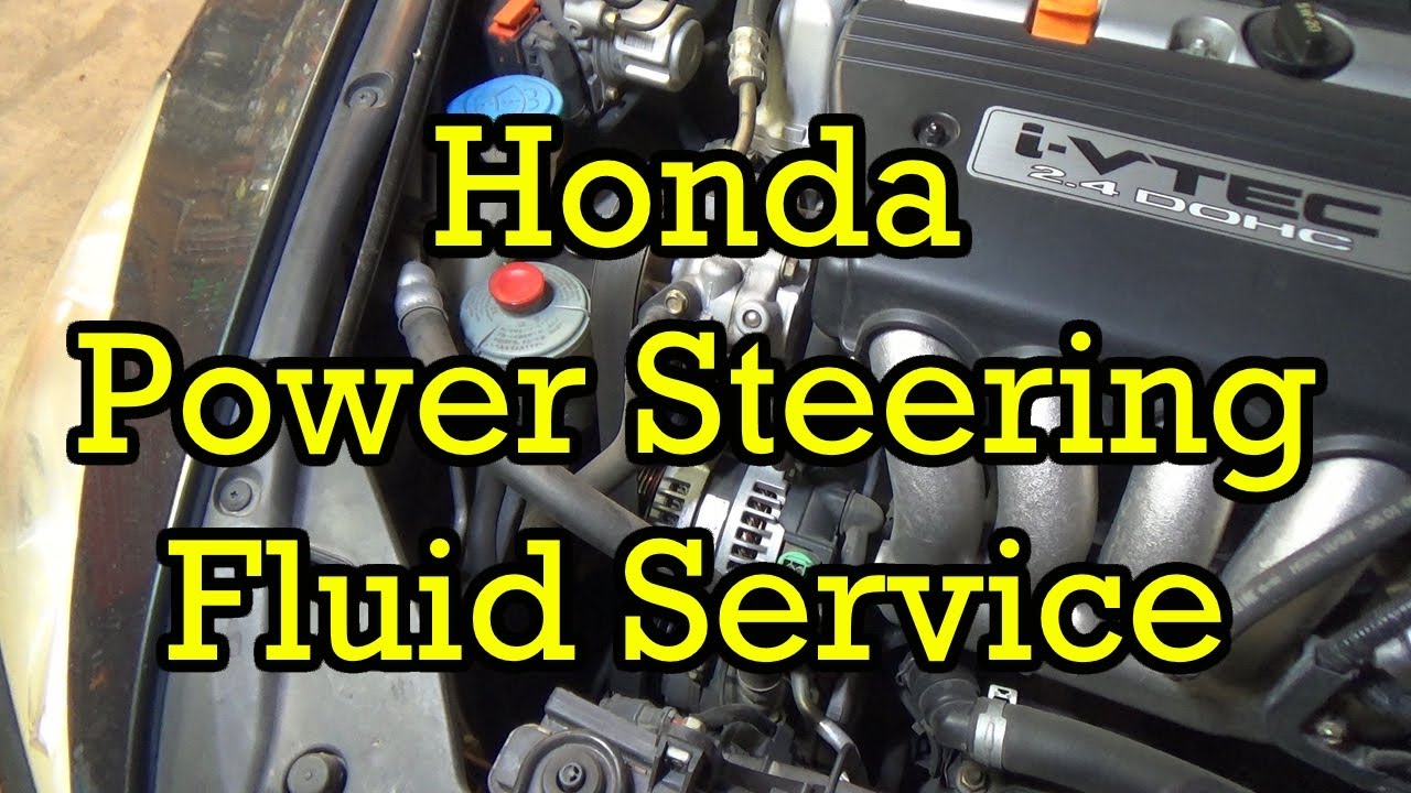 how much power steering fluid do i need