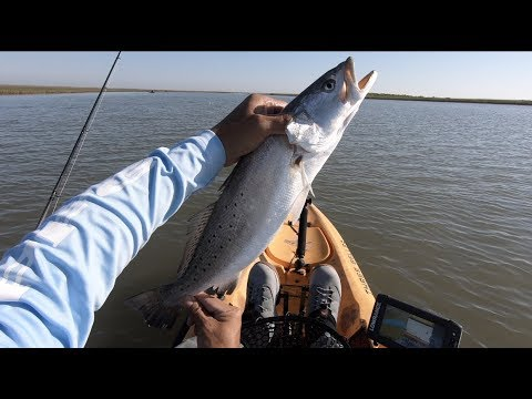Fishing Christmas Bay TX and got a nice 22 inch Speckled Trout