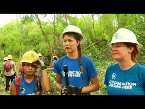 "HTV News Flash: ""Students, Clean up and Conservation"""