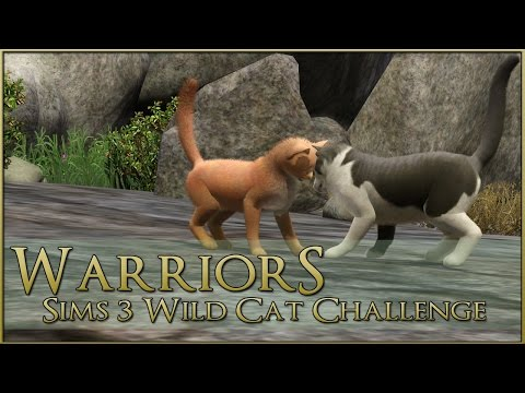 The False Dawn 🌿 Warrior Cats Sims 3 Legacy - Episode #72 (R