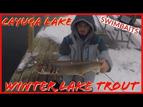 Winter Lake Trout Fishing On Cayuga Lake Using Swimbaits