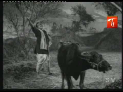 Muddabanthi Poolu Petti Song From Kalasi Unte Kaladu Sukham | NTR | Savitri