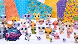 Littlest Pet Show: Сезон 2. Выпуск # 2. Раздельный сбор мусора