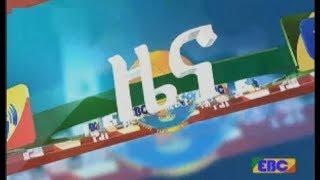 #EBC አማርኛ ምሽት 2 ሰዓት ዜና …መጋቢት 17/2010 ዓ.ም