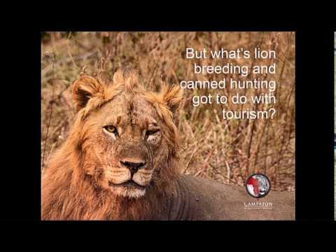 RT Session - Captivity, Wildlife and Tourism - WTM 2016