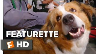 A Dog's Journey Exclusive Featurette - Joy of Dogs (2019)   Movieclips Coming Soon