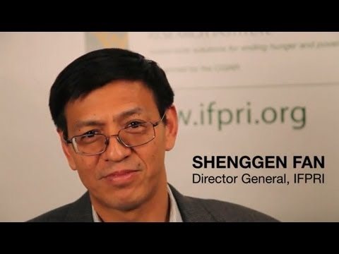 Agricultural Productivity & Food Security Conference - Shenggen Fan - Sept 23, 2011