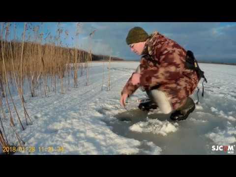 Ловля на червя зима