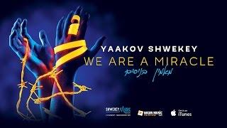 יעקב שוואקי - מאמין בניסים | SHWEKEY | We Are A Miracle ♫ Audio Preview