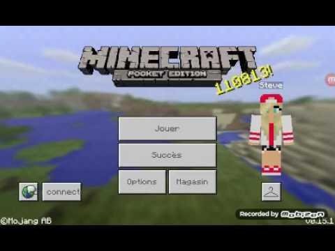 Minecraft skin police