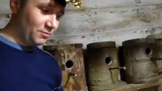 Разведение волнистых попугаев часть-7. Подсчёт яиц и первый птенец.
