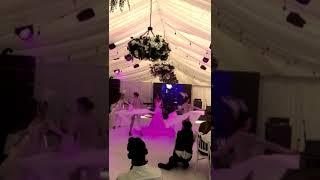 Дмитрий Нагиев провел свадьбу в Барнауле.