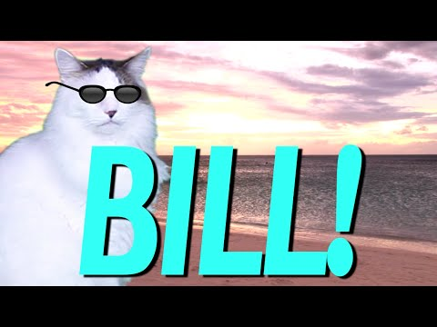 HAPPY BIRTHDAY BILL! EPIC CAT Happy Birthday Song YouTube