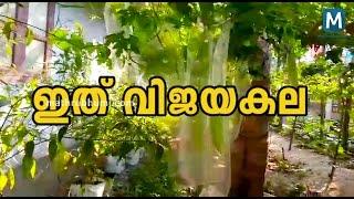 Vijaya Kala | Vegetable Farming