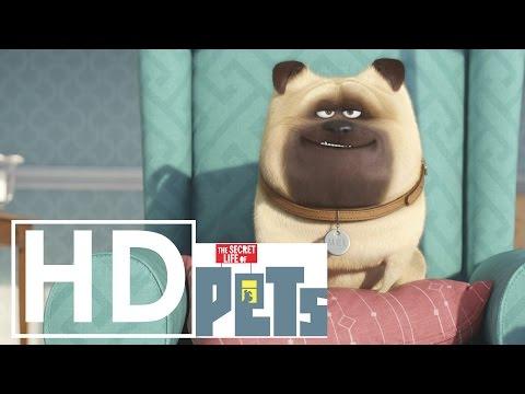 (Official)  Secret Life of Pets Music Video - Do your Thing - Basement Jaxx