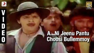 Yamaleela - A...Ni Jeenu Pantu Choosi Bullemmoy Video (Telugu) | Ali, Indraja