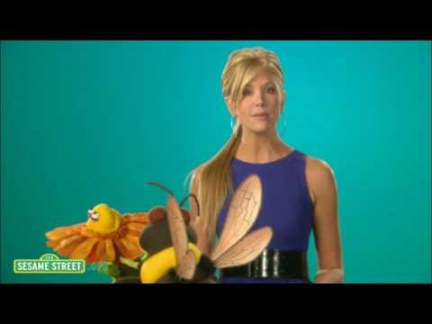 Sesame Street: Nancy Odell: Pollinate