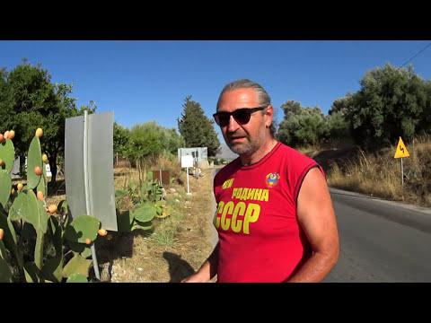 Греция, Крит кактус Опунция, как собирать, как чистить, полезные свойства Опунции