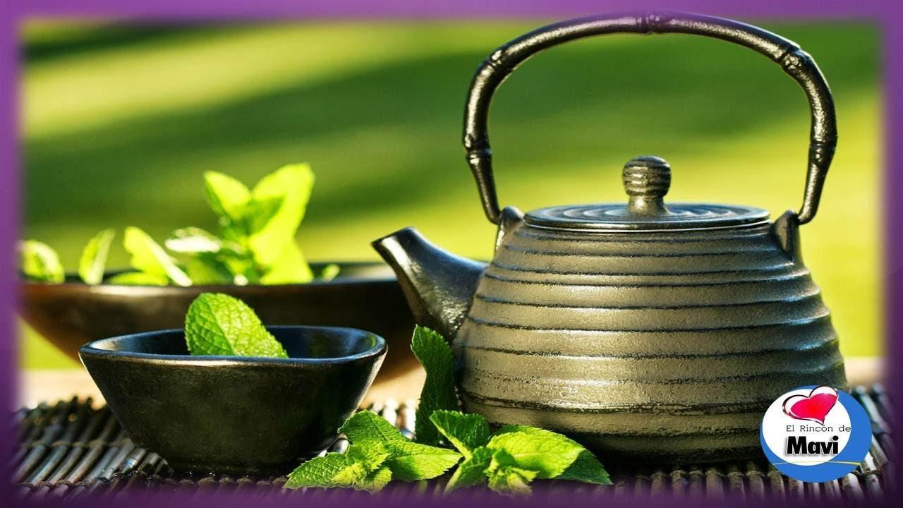 funciones del te verde en el organismo