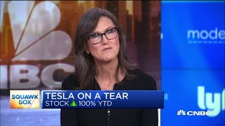 Tesla's biggest bull: Wall Street skepticism is 'the best wall of worry' I've experienced