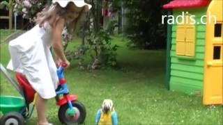 Das Sissi Lied_ Spielen - Singen - Lachen