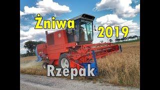 VLOGAS#13 Żniwa 2019 Rozpoczęte!! Pierwsza działka Rzepaku pod kosę!