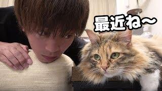 Download lagu ちゃちゃと人生相談 MP3