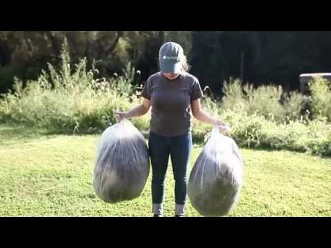 A Wool Story | Processing A Fleece In A Fiber Mill by A Girl Named Leney