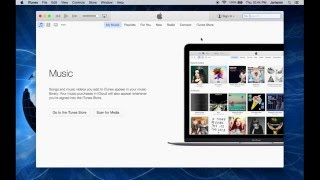 How to Create more than one iTunes Libraries