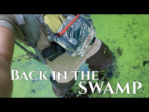 Scouting Public Land Whitetails ; Back In The Swamp