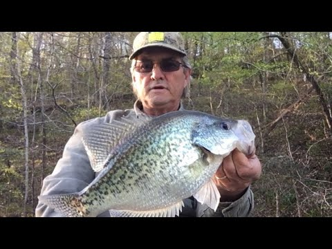 BIG CRAPPIE EARLY SPRING