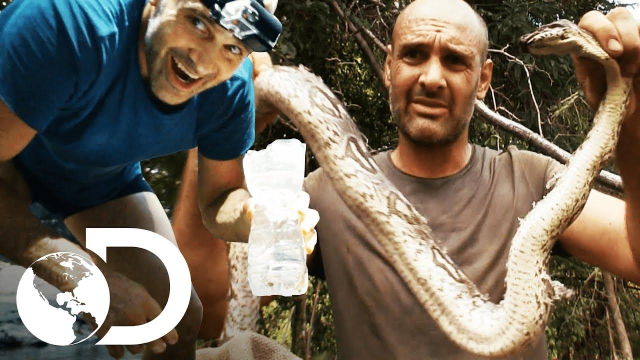 Las comidas de supervivencia más extremas | Ed Stafford al extremo |  Discovery Latinoamérica