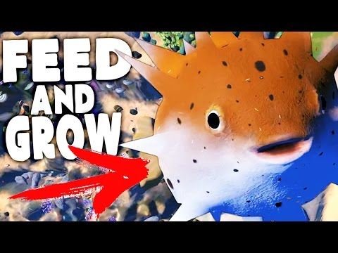 Feed And Grow Fish Lvl 1000 Blow Fish Drains The Ocean