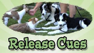 Release Cues: Dog Training