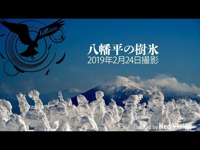 八幡平の樹氷【4K】