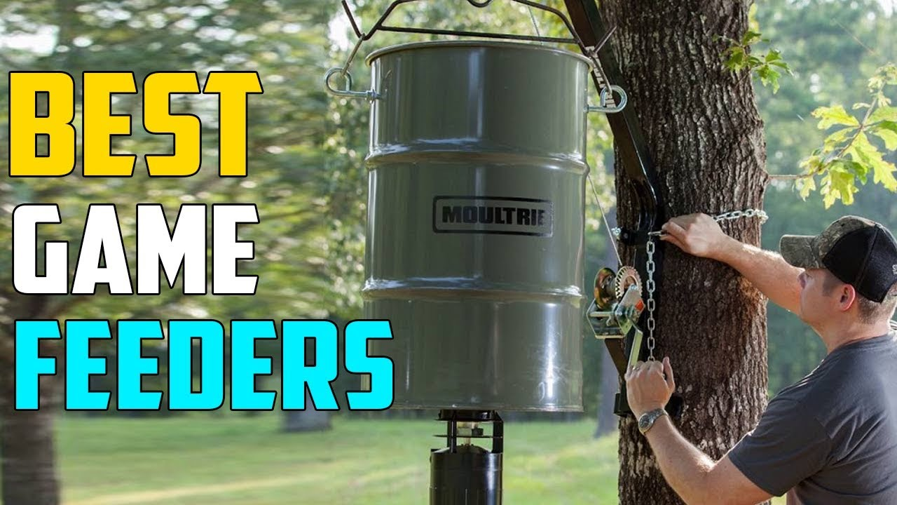 Best Game Feeders In 2019 – Top 5 Best Game Feeder For Hunting
