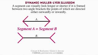 Dynamic Mller Lyer Illusion