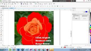 Menggambar Vektor Bunga Mawar