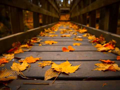 Emotional Horizons – Autumn (Jon O'Bir Remix)