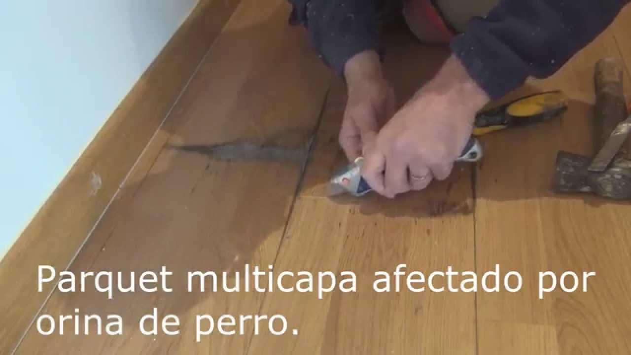 Como reparar parquet como reparar parquet manchas de - Como reparar piso de parquet rayado ...